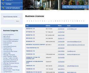 business-licences